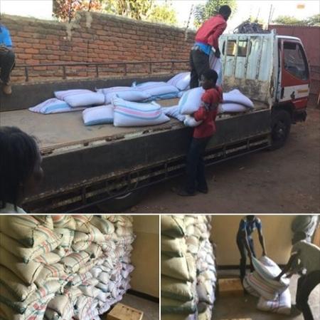 Malawi maize